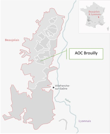carta viticola AOC Beaujolais Cru Brouilly
