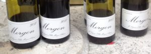 AOC Morgon Bottles Beaujolais