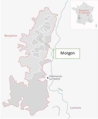 AOC Morgon Beaujolais