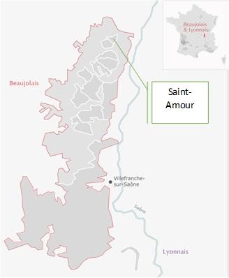 AOC Saint-Amour